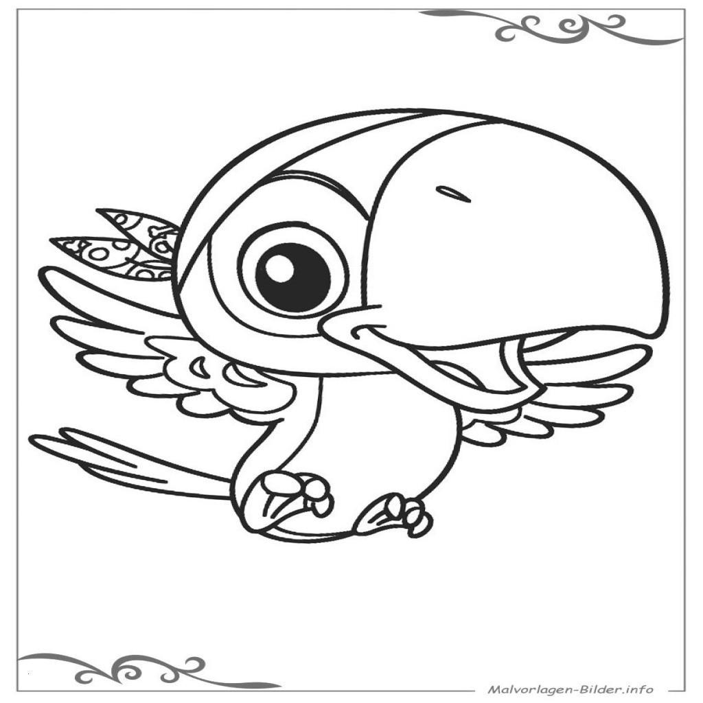 Totenkopf Bilder Zum Ausdrucken Kostenlos Inspirierend 37 Malvorlagen Frosch Scoredatscore Schön Ausmalbilder totenkopf Bilder
