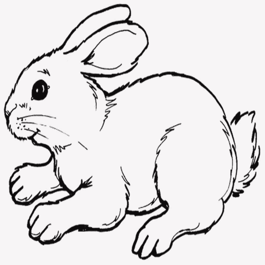 Traktor Zeichnungen Zum Ausmalen Genial 25 Gut Aussehend Ausmalbilder Tiere Hase Inspirierend Hase Sammlung