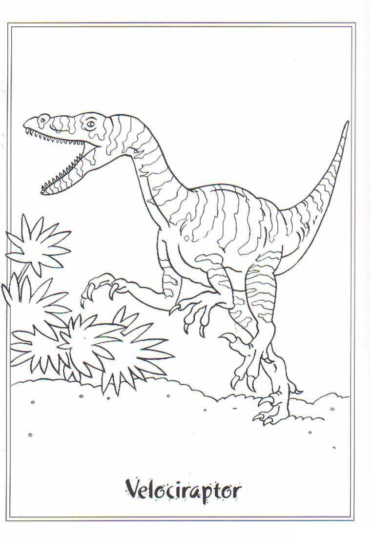 Tyrannosaurus Rex Ausmalbild Das Beste Von Dinosaurier Ausmalbilder Tyrannosaurus Rex Schön Tyrannosaurus Rex Galerie