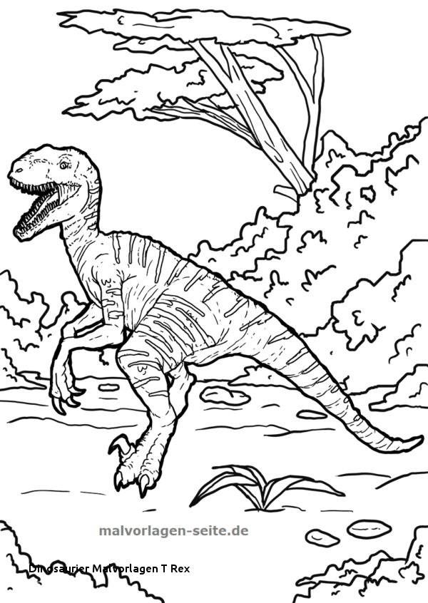 Tyrannosaurus Rex Ausmalbild Genial 29 Dinosaurier Malvorlagen T Rex Fotos