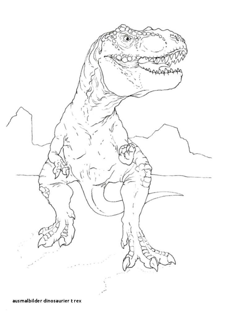 Tyrannosaurus Rex Ausmalbild Frisch Ausmalbilder Tiere Page 12