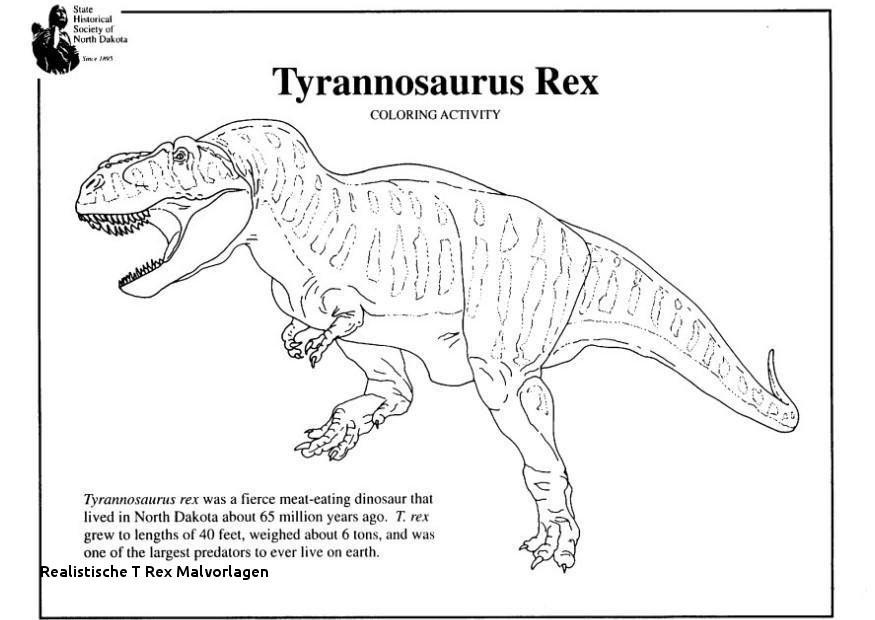 Tyrannosaurus Rex Ausmalbild Neu Realistische T Rex Malvorlagen Das Bild