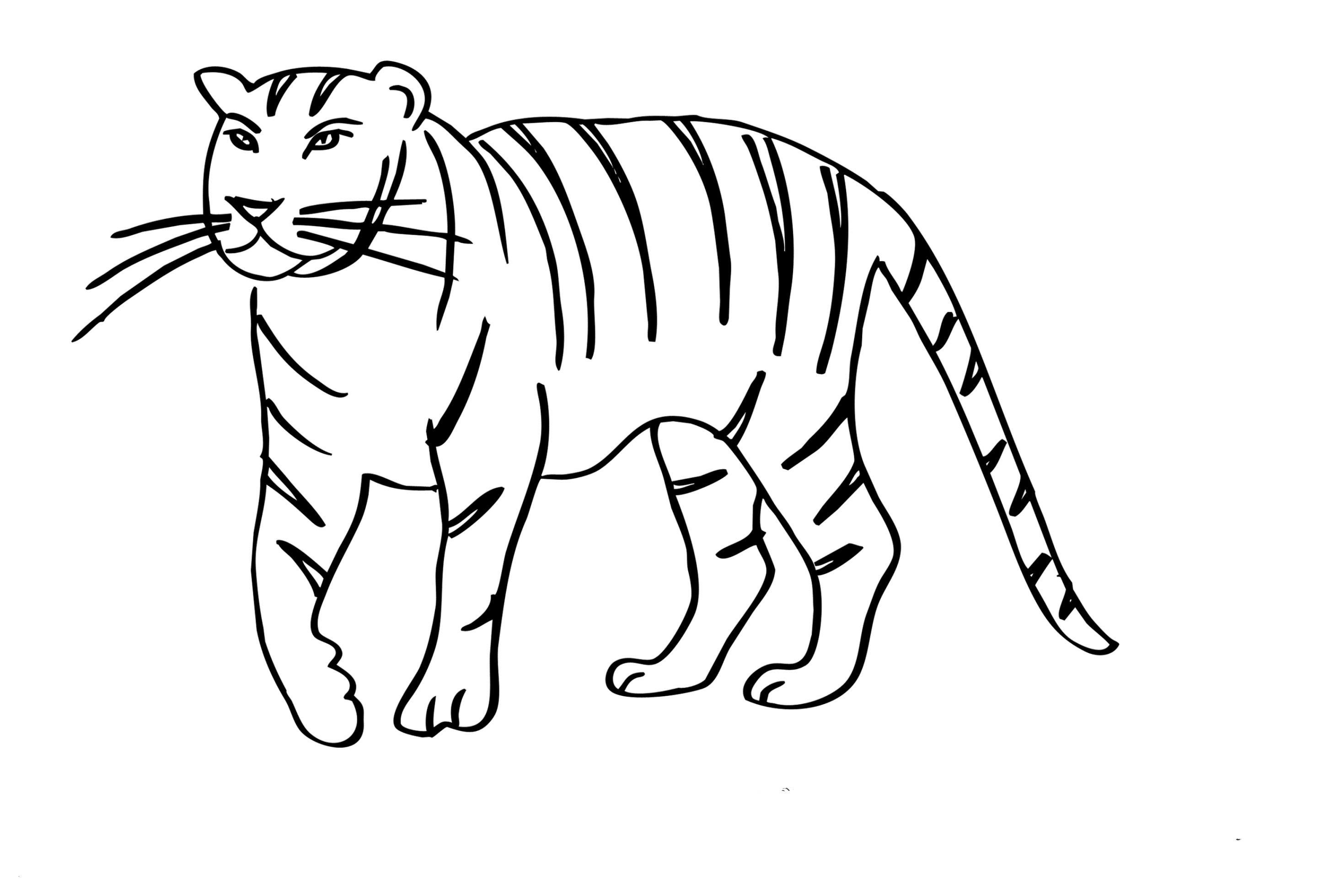 Unterwasserpflanzen Zum Ausmalen Genial Malvorlagen Tiger Das Beste Von Vorlagen Zum Ausmalen Malvorlagen Das Bild