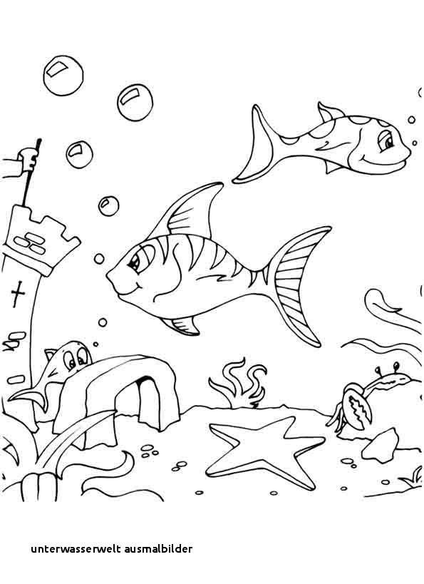 Unterwasserwelt Zum Ausmalen Frisch 22 Unterwasserwelt Ausmalbilder Bilder