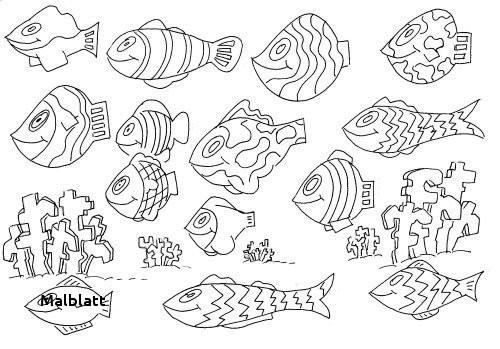 Unterwasserwelt Zum Ausmalen Frisch 26 Malblatt Fotos