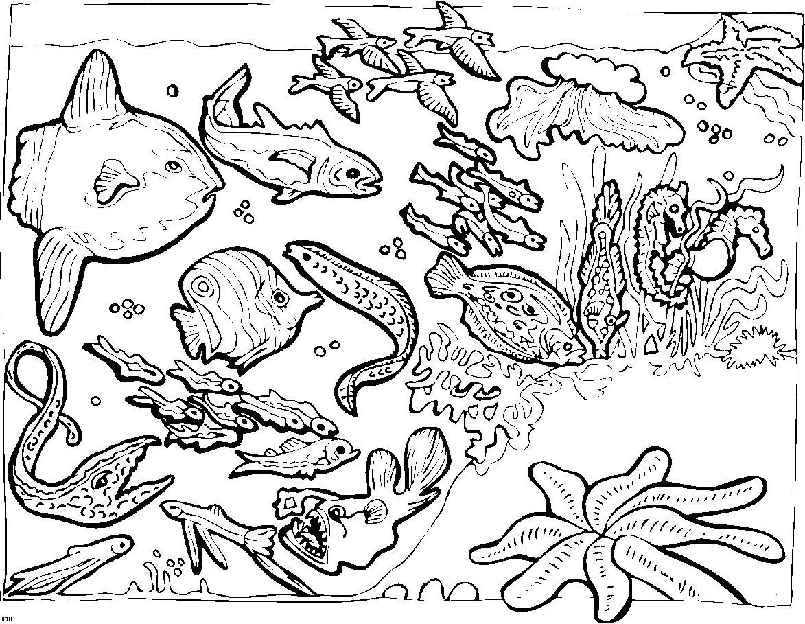 Unterwasserwelt Zum Ausmalen Frisch 29 Inspirierend Unterwasserwelt Malvorlagen – Malvorlagen Ideen Sammlung