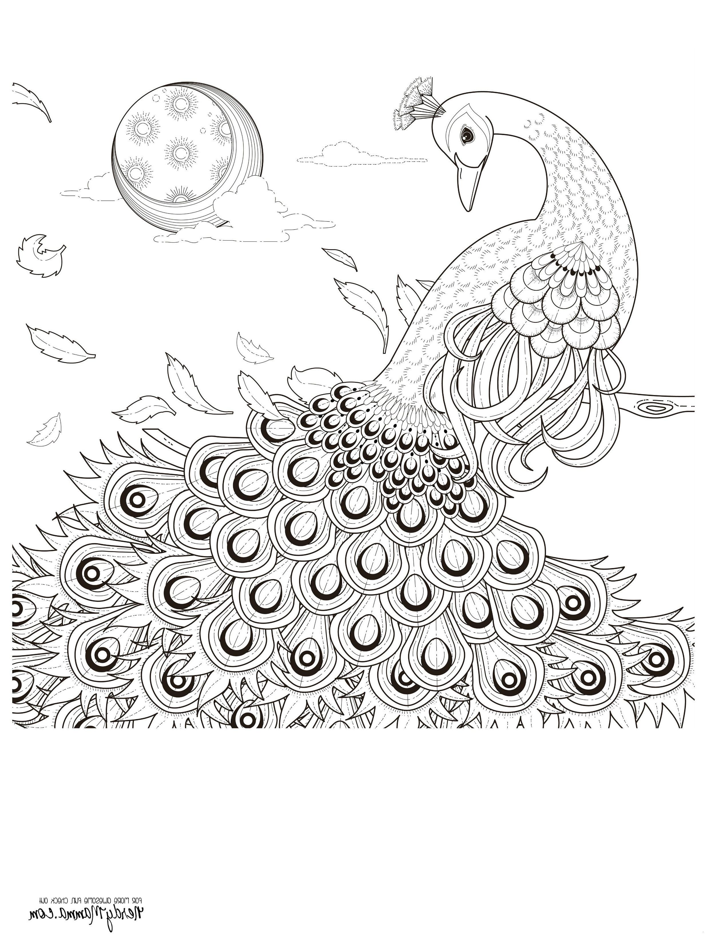Unterwasserwelt Zum Ausmalen Frisch 29 Inspirierend Unterwasserwelt Malvorlagen – Malvorlagen Ideen Stock