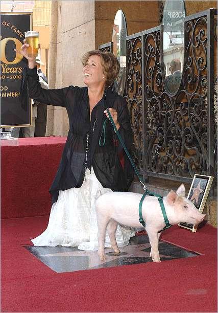 Walk Of Fame Stern Vorlage Einzigartig 75 Star Fame Vorlage Bizsayshmoortiz Bild