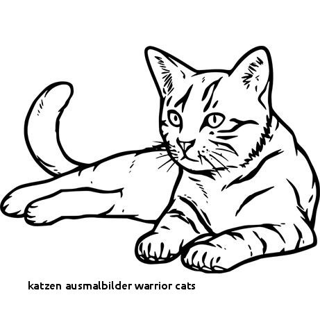 Warrior Cats Ausmalbilder Das Beste Von 25 Katzen Ausmalbilder Warrior Cats Colorprint Fotografieren