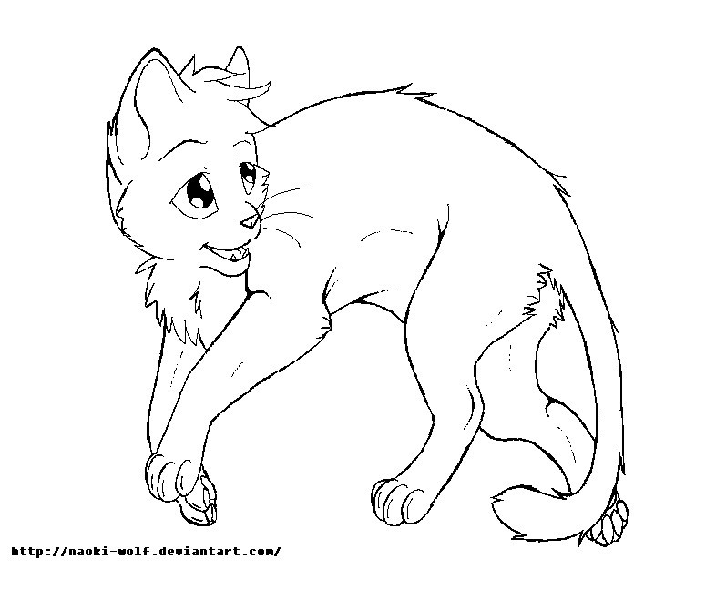 Warrior Cats Ausmalbilder Das Beste Von Warrior Cat Coloring Pages Best Cat Drawing Template at Sammlung