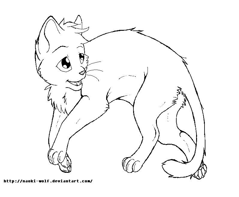 katzen ausmalbilder warrior cats  malvorlagen kinder
