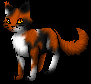 Warrior Cats Ausmalbilder Frisch Warrior Cats Wiki Character Art Archiv 1 2013 Stock