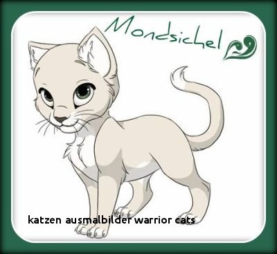 Warrior Cats Ausmalbilder Genial 25 Katzen Ausmalbilder Warrior Cats Colorprint Bilder