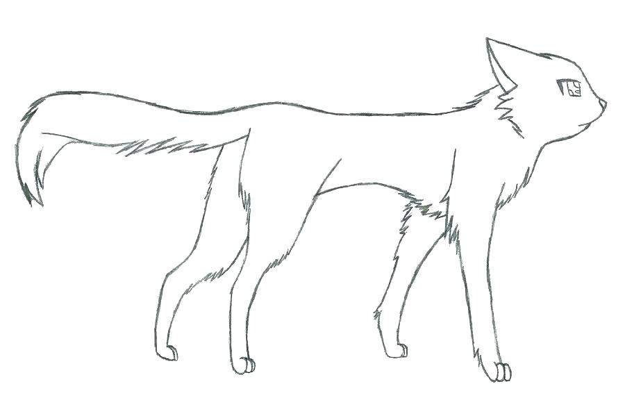 Warrior Cats Ausmalbilder Inspirierend Warrior Cat Coloring Pages Best Cat Drawing Template at Fotos