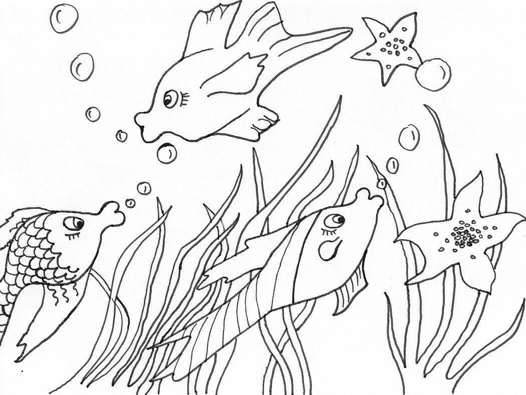 Wasserpflanzen Zum Ausmalen Inspirierend 40 Regenbogenfisch Ausmalbilder Scoredatscore Schön Harry Potter Galerie
