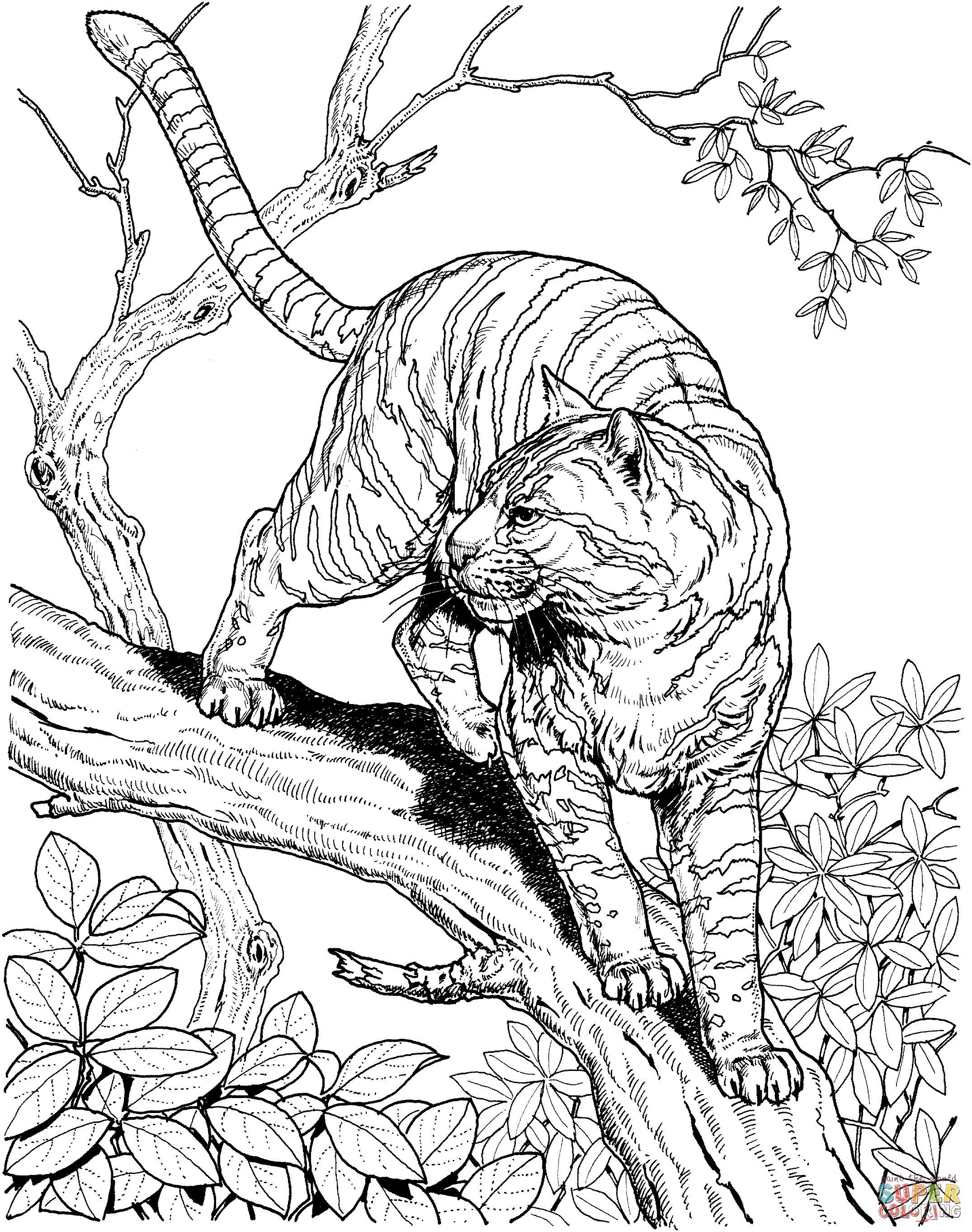 Wolf Bilder Zum Ausmalen Das Beste Von Image Result for Adult Jungle Coloring Pages Neu Peter Und Der Wolf Das Bild