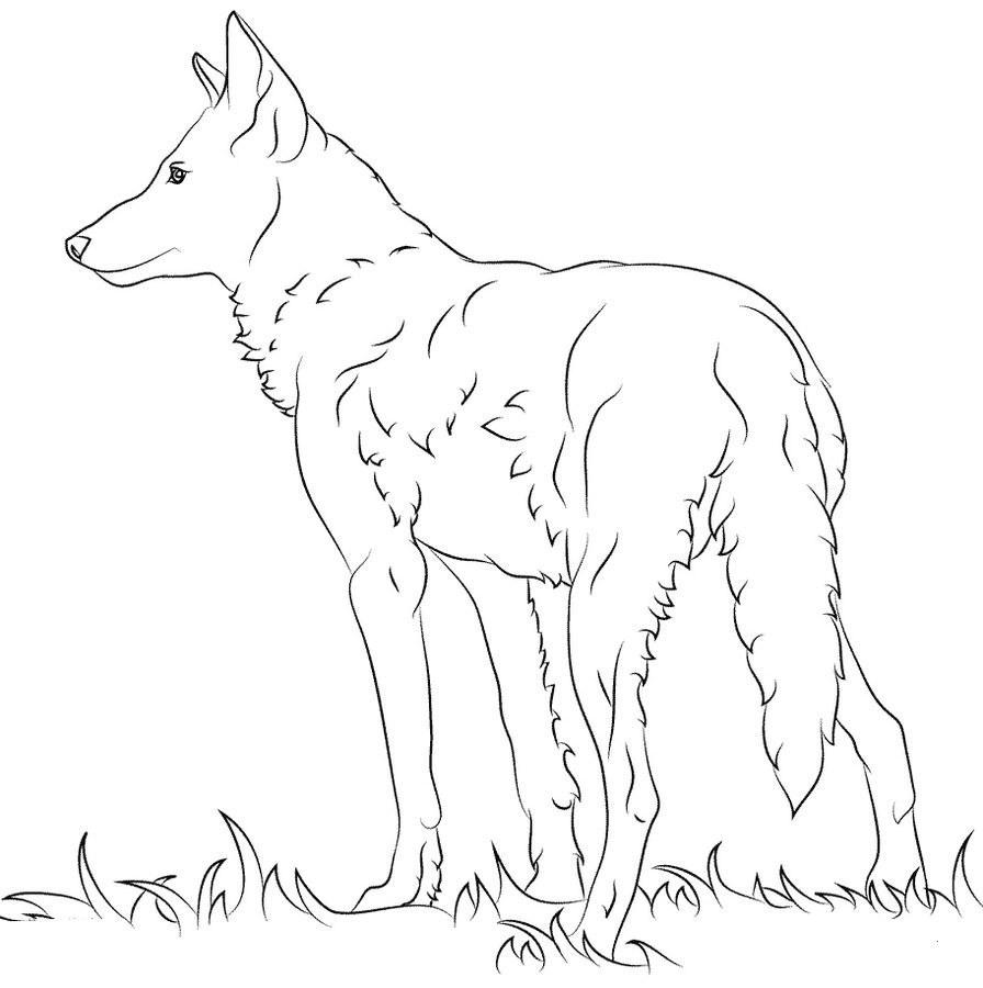 Wolf Bilder Zum Ausmalen Einzigartig 25 Schön Ausmalbilder Wolf – Malvorlagen Ideen Sammlung