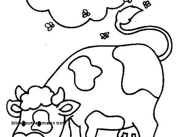 Wolf Bilder Zum Ausmalen Frisch Bilder Zum Ausmalen Tiere Malvorlage A Book Coloring Pages Best sol Fotos