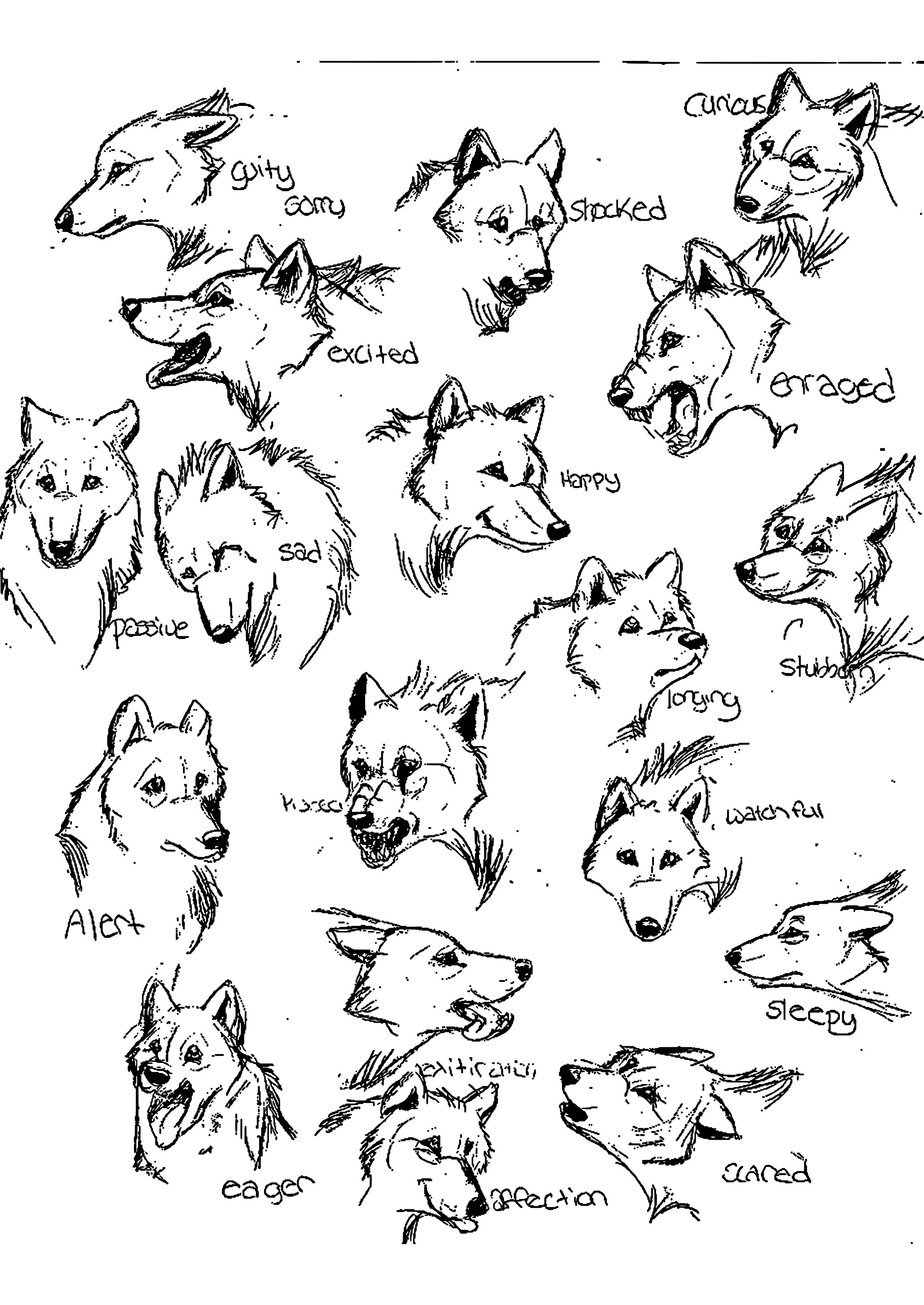 Wolf Bilder Zum Ausmalen Frisch Wolf Ausmalbilder Awesome Yoda Ausmalbilder Uploadertalk Beste Galerie