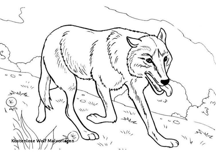 Wolf Bilder Zum Ausmalen Inspirierend 20 Kostenlose Wolf Malvorlagen Galerie