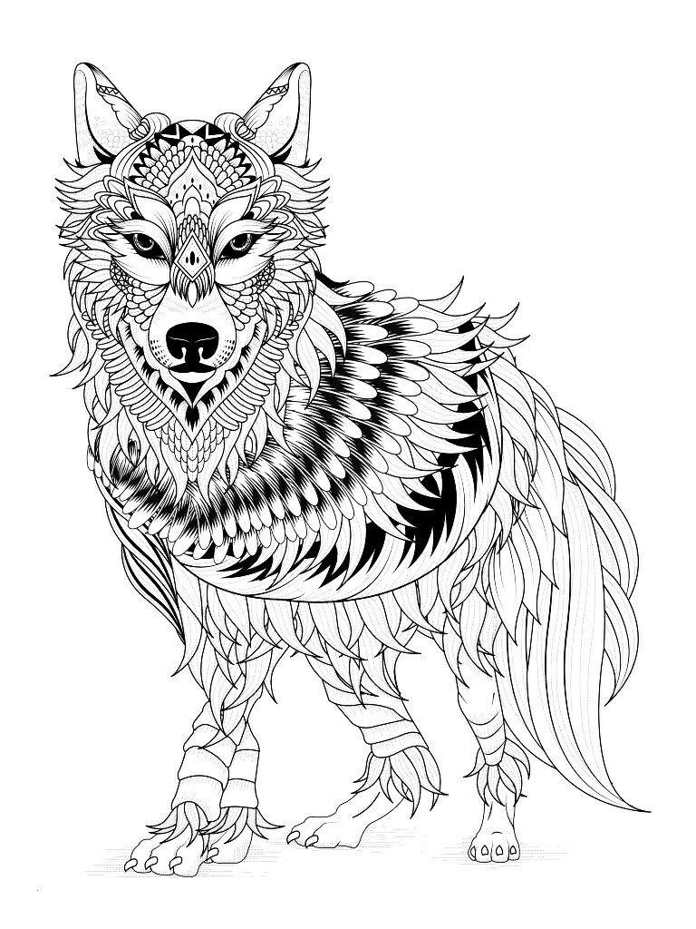 Wolf Bilder Zum Ausmalen Inspirierend Pin by Barbara Brantley Coloring Pages Pinterest Elegant Stock