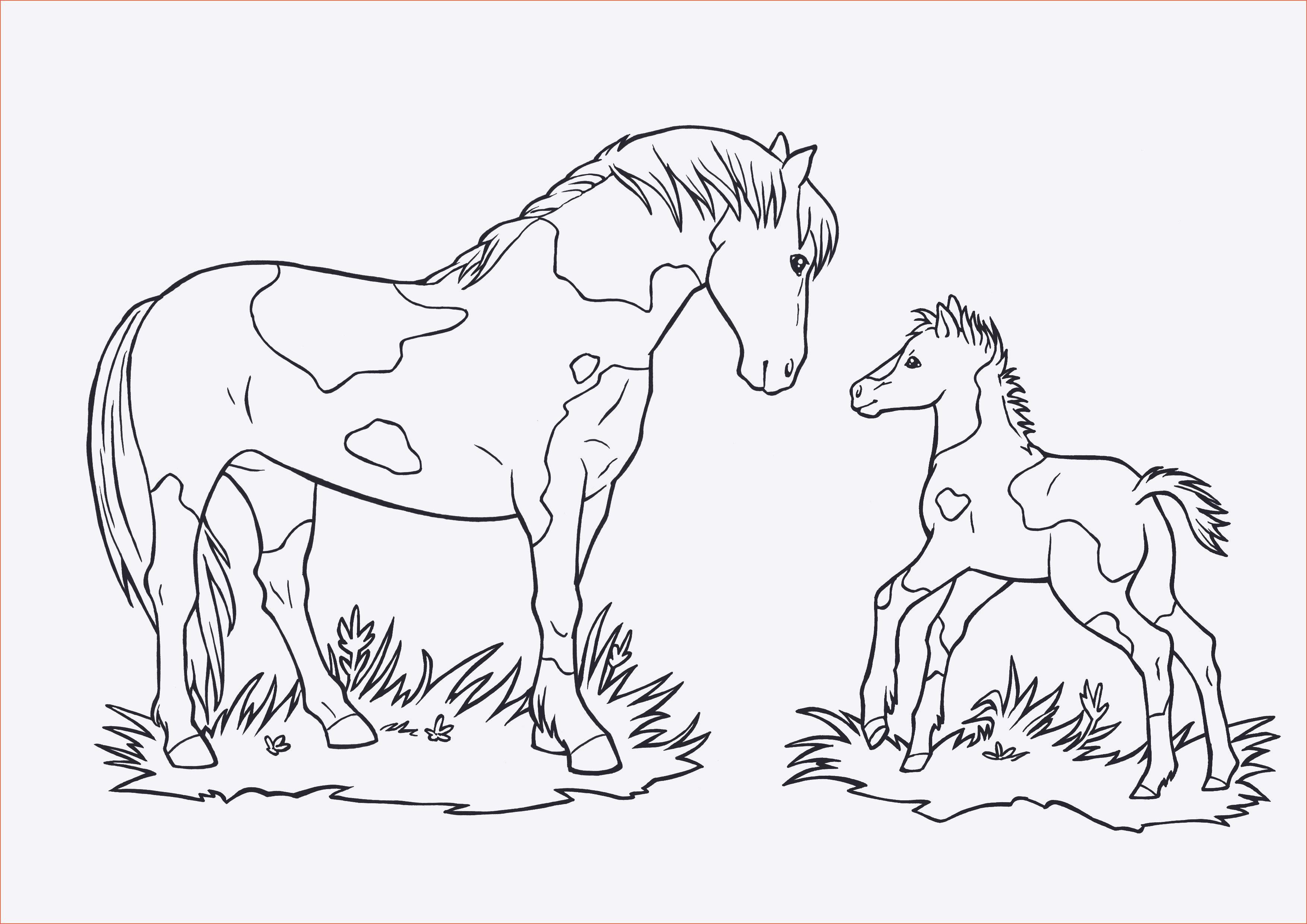 Ausmalbilder Barbie Pferd Genial Pferde Ausmalbilder Horseland Sammlung
