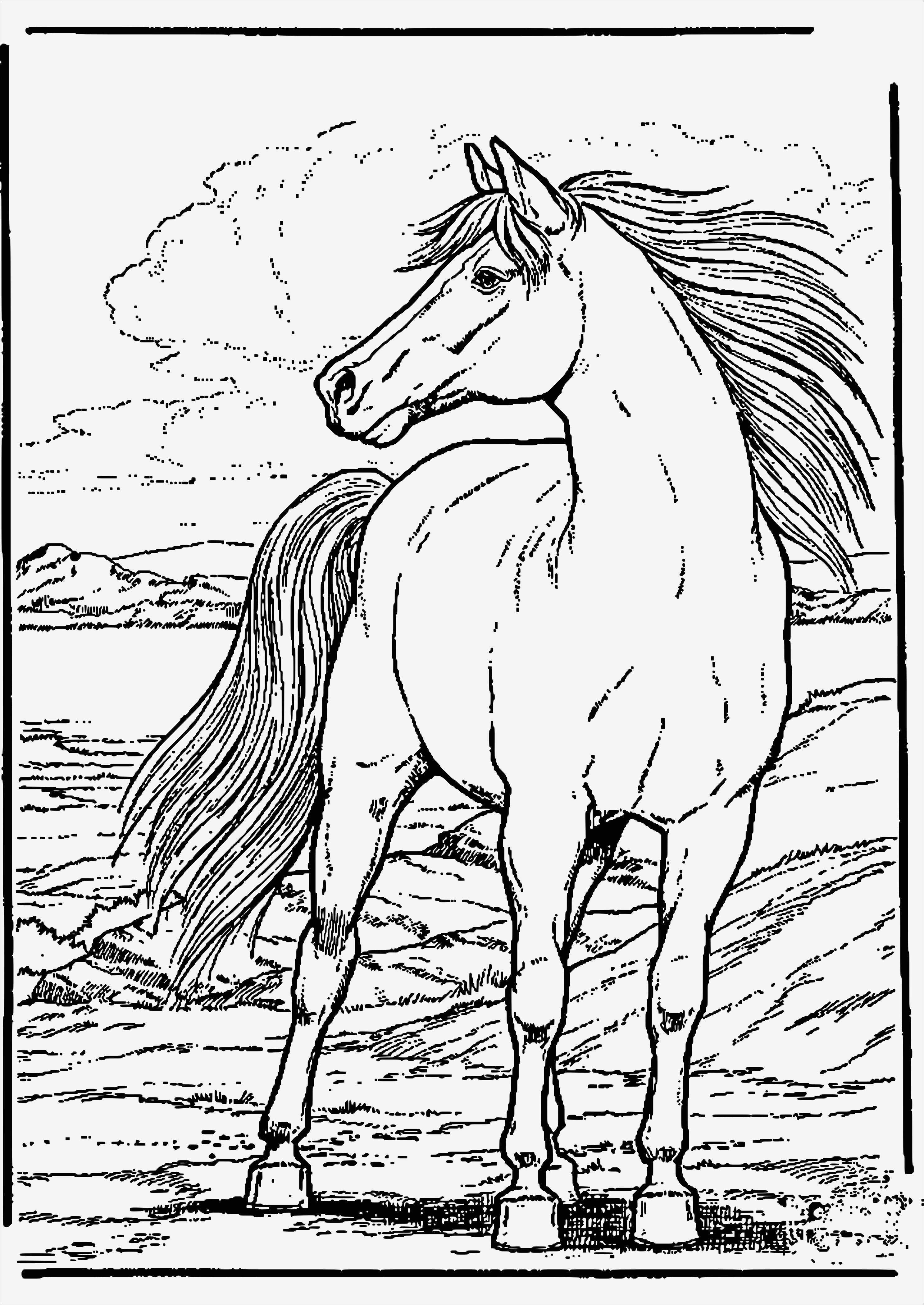 Ausmalbilder Bibi Und Tina 3 Zum Ausdrucken Neu Ausmalbilder Pferde Zum Ausdrucken Vorstellung Malvorlagen Bibi Und Stock
