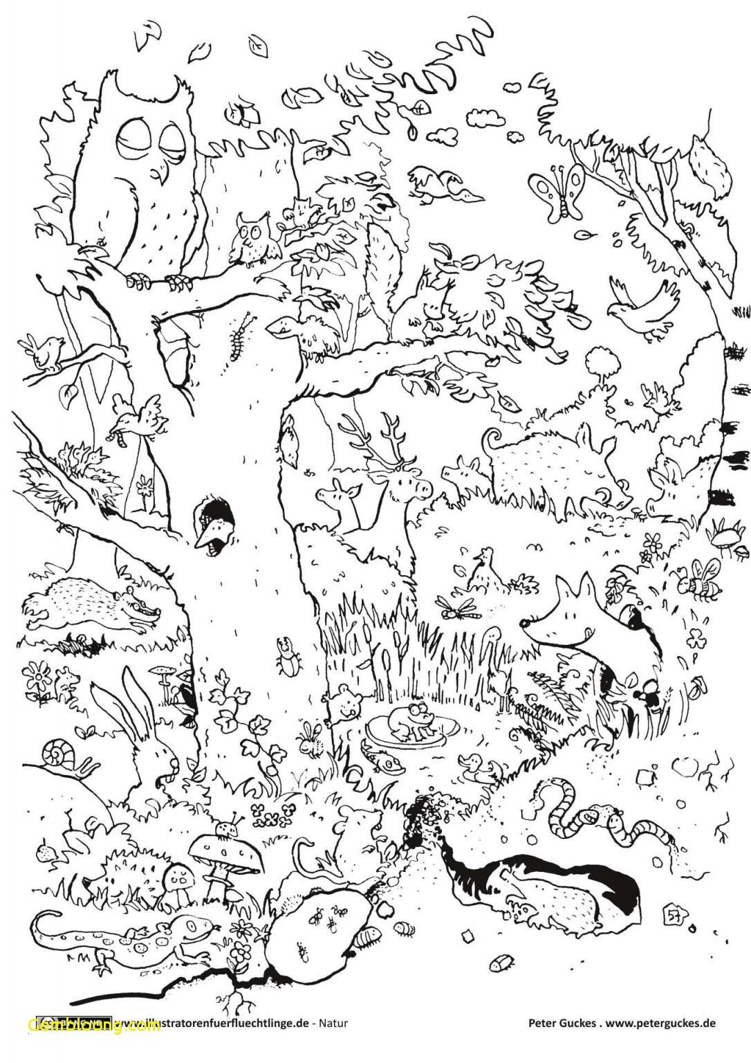 Ausmalbilder Einhorn Kostenlos Einzigartig 45 Neu Ausmalbilder Einhorn Truthbetold Ics Das Bild