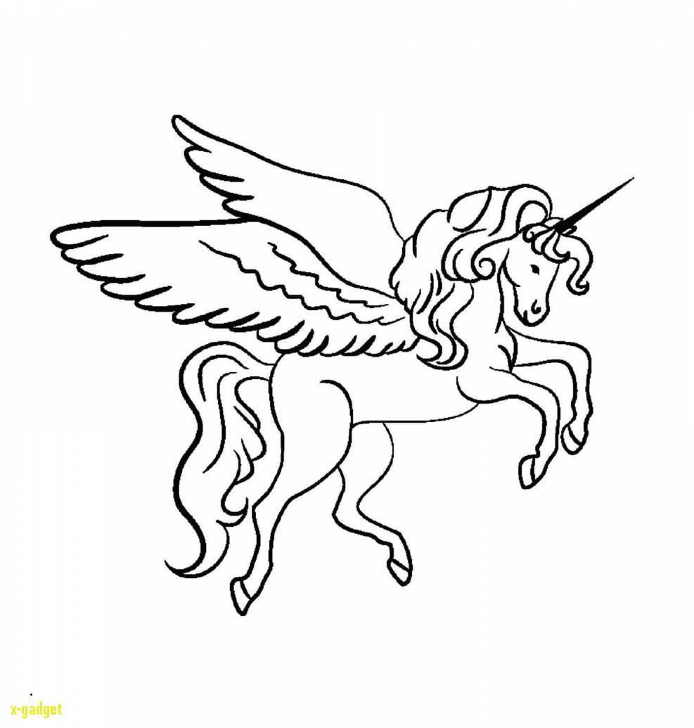 Ausmalbilder Einhorn Kostenlos Neu Ausmalbilder Dragons Ohnezahn Nouveau S Malvorlage Dragons Das Bild