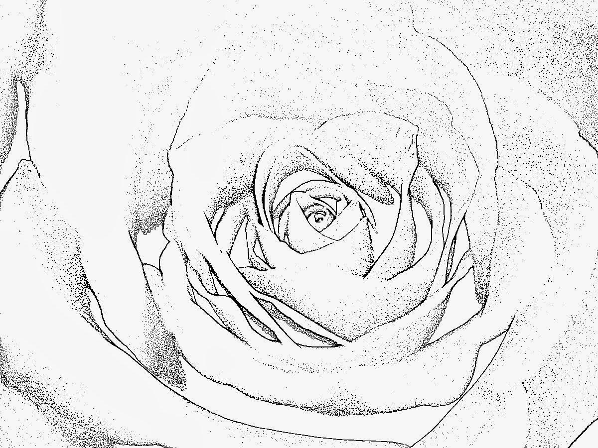 Ausmalbilder Rosen Mit Herz Neu Ausmalbilder Herzen Zum Ausdrucken Nouveau Image 20 Lecker Herz Fotos