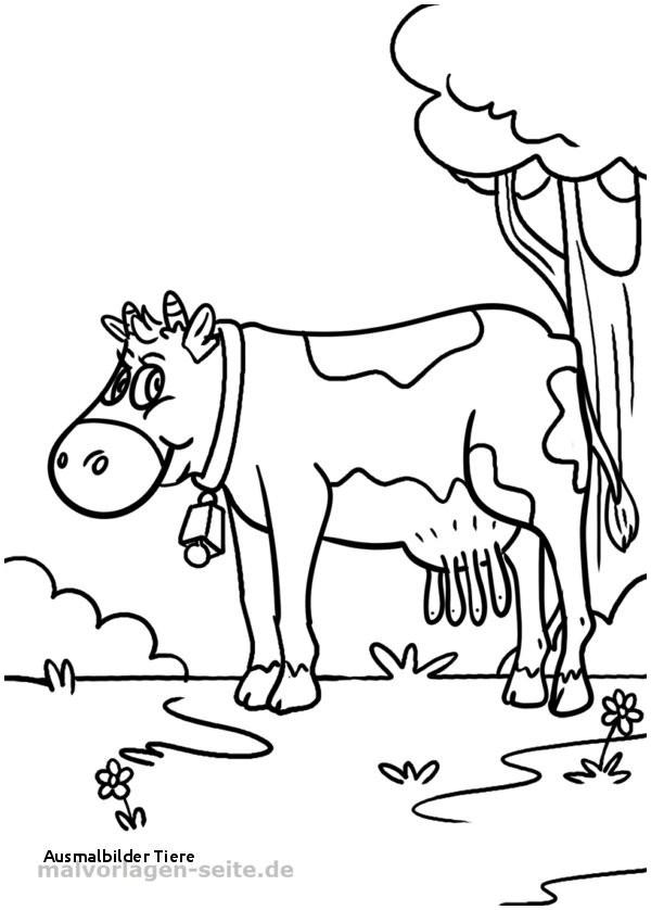 Ausmalbilder Tiere Im Dschungel Frisch Ausmalbilder Tiere Ausmalbilder Tiere Malvorlage Kuh Pinterest Bilder