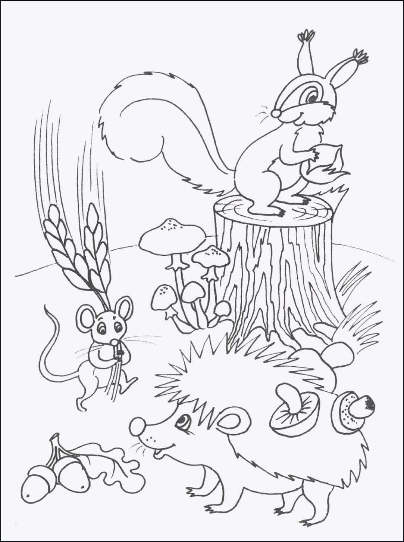 Ausmalbilder Tiere Im Dschungel Genial Wie Zeichnet Man Tiere Bild Bayern Ausmalbilder Frisch Igel Galerie