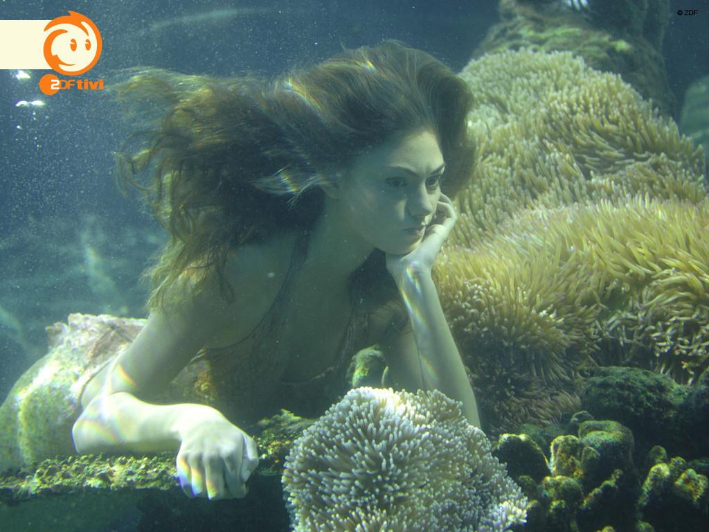 H2o Plötzlich Meerjungfrau Ausmalbilder Frisch H2o Just Add Water Bulgaria Immagini Cool Hd Wallpaper and Fotografieren