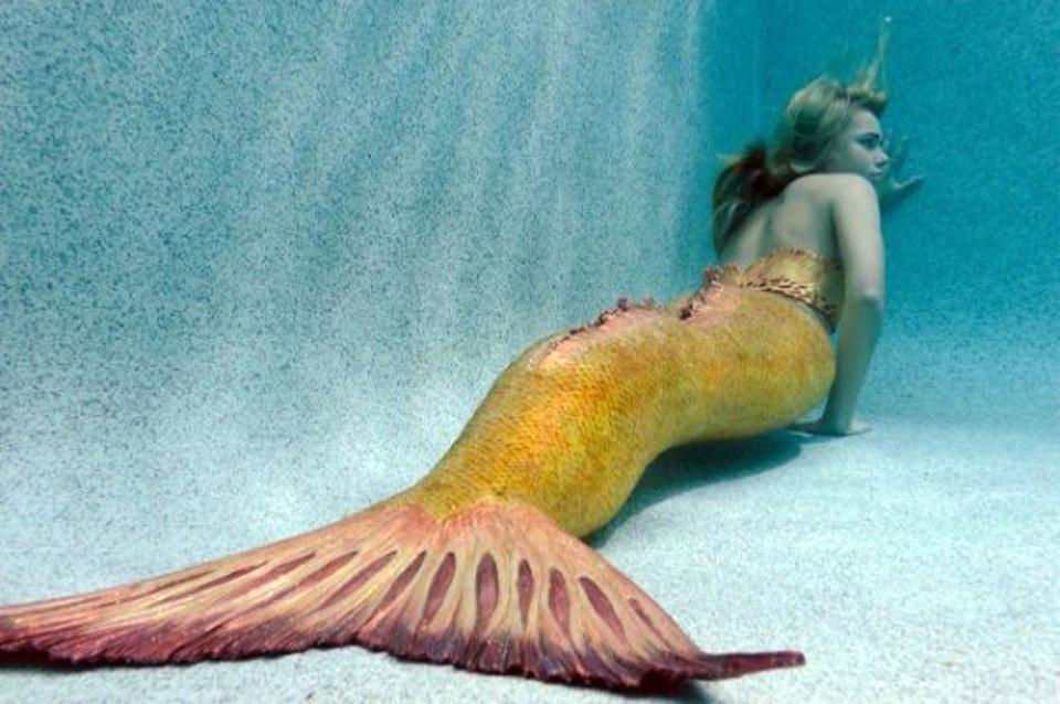 H2o Plötzlich Meerjungfrau Ausmalbilder Neu H2o 100 Fotos