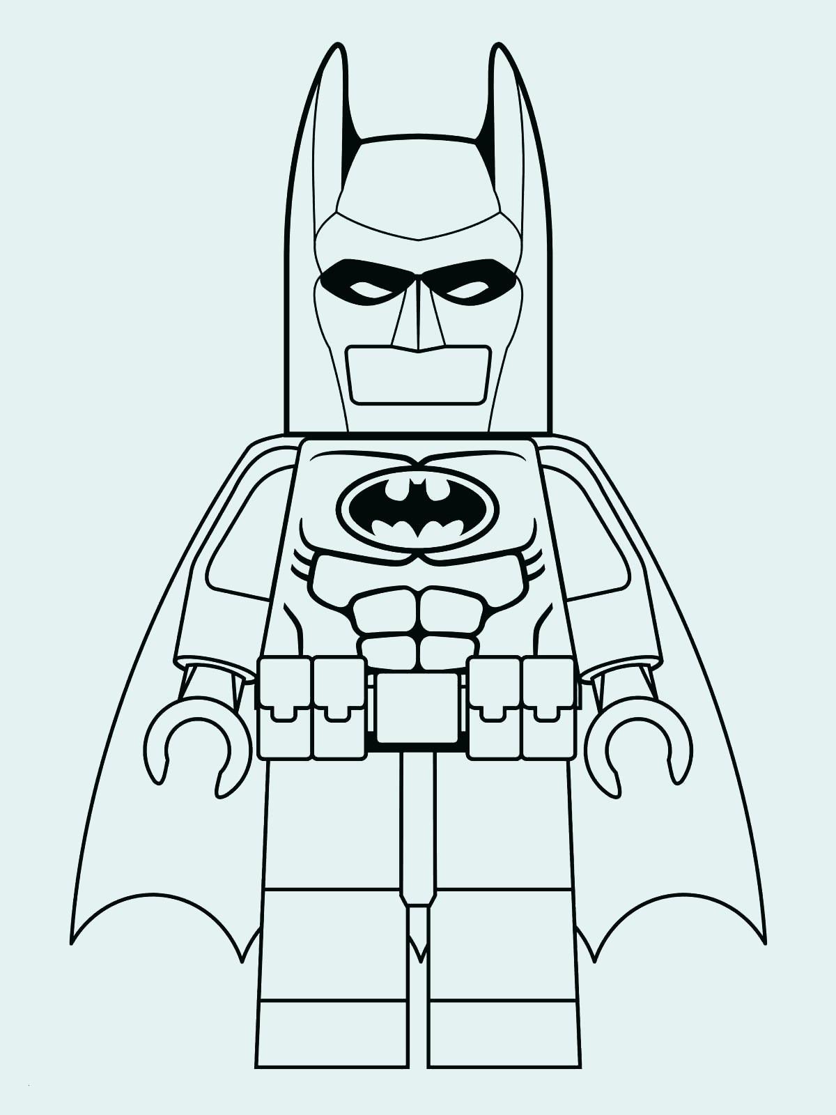 Igel Vorlage Zum Ausdrucken Das Beste Von Lego Ninjago Ausmalbilder Zum Ausdrucken Luxusfotografie Malvorlagen Das Bild
