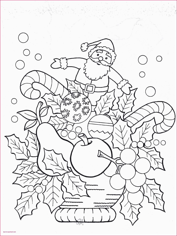 Igel Vorlage Zum Ausdrucken Genial Rentier Vorlage Zum Ausdrucken Ausmalbilder Weihnachten Schneemann Das Bild
