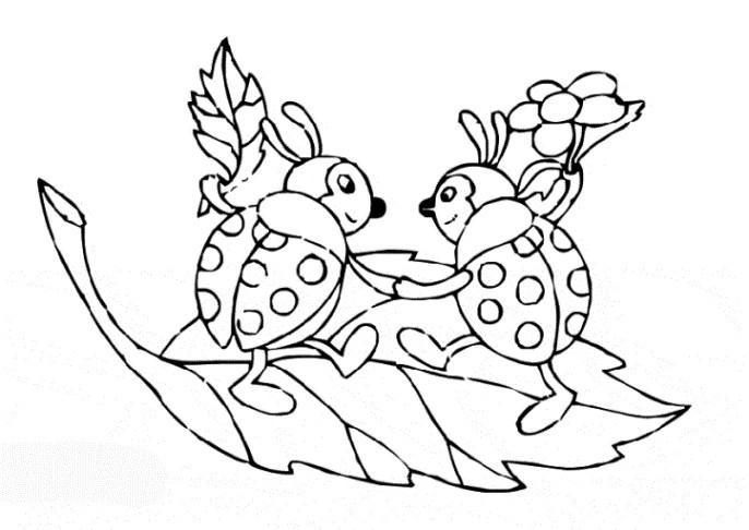 Kleeblatt Zum Ausmalen Das Beste Von Kleeblatt Zum Ausmalen Unique Stock Schmetterlinge Zum Ausdrucken Bild