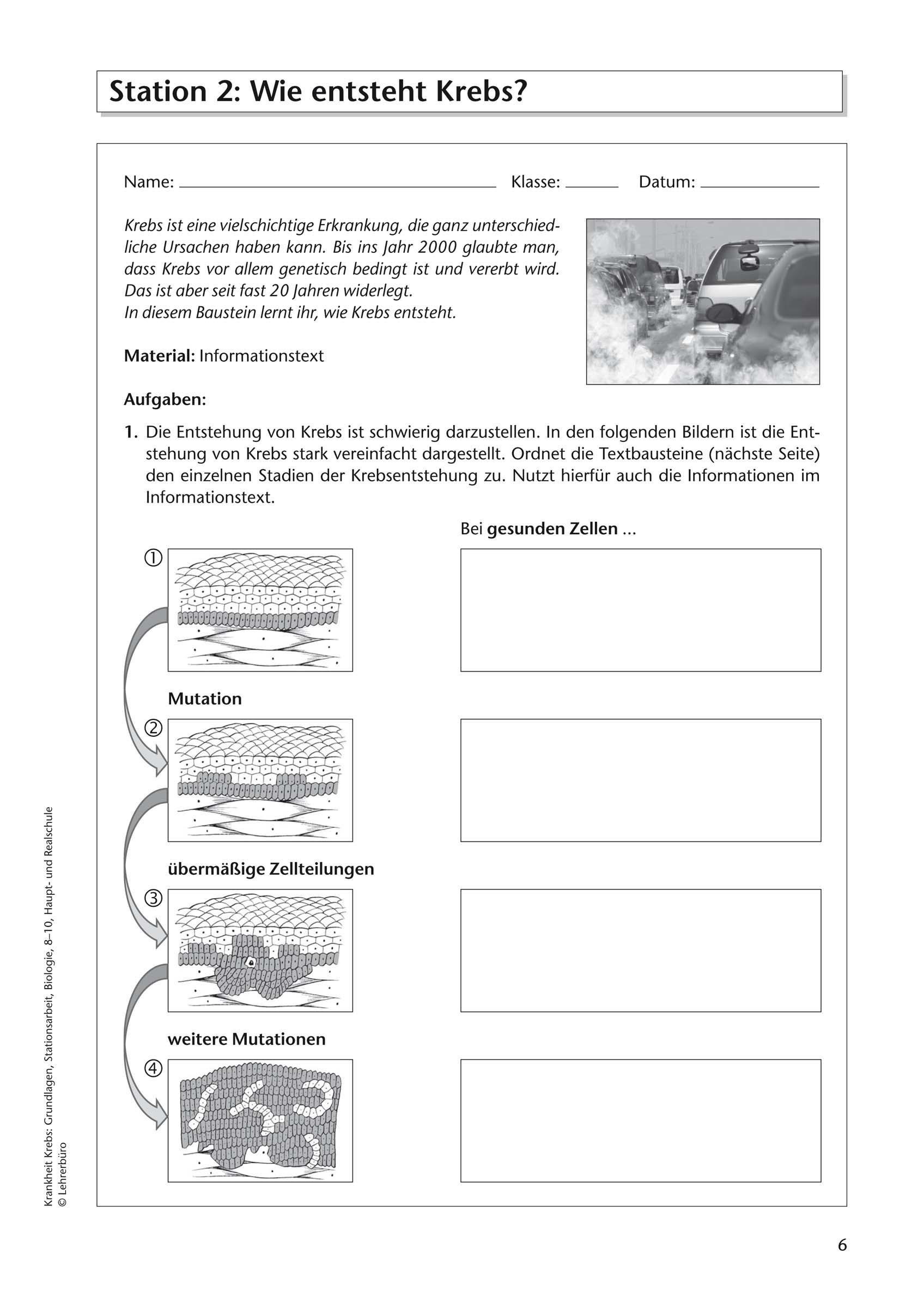 Wortsuchrätsel Zum Ausdrucken Einzigartig Arbeitsblätter · Sekundarstufe I · Lehrerbüro In Galerie