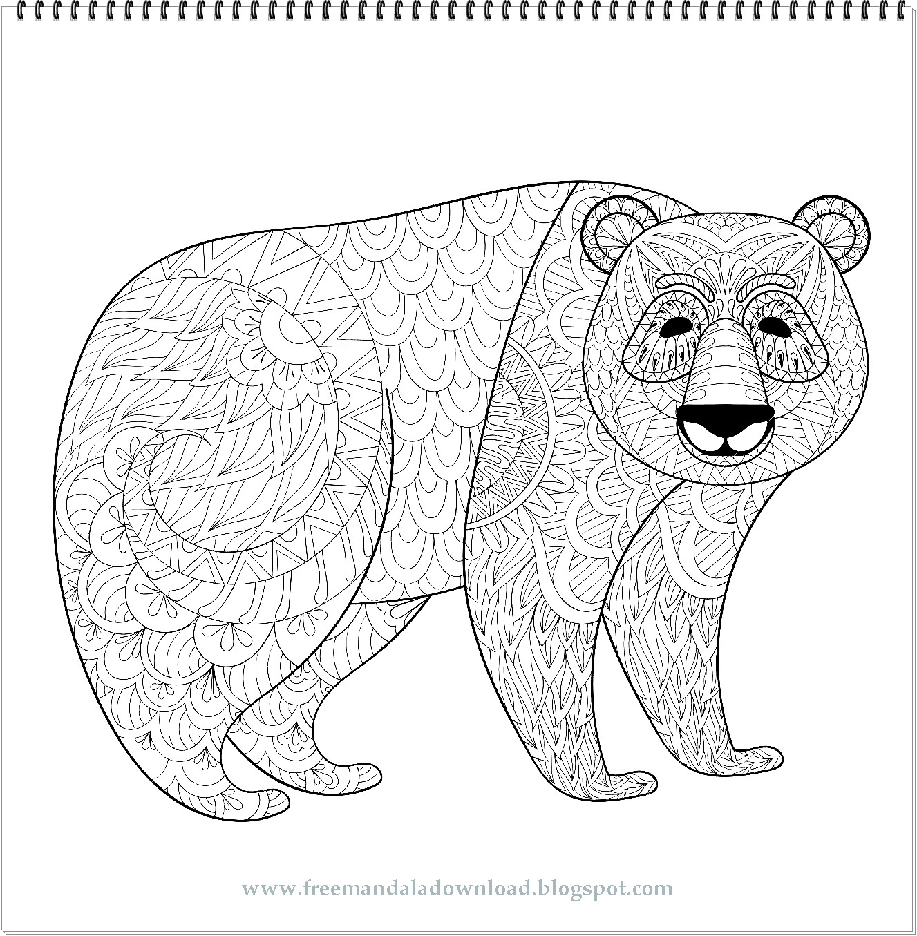 Ausmalbilder 3 Ausrufezeichen Inspirierend Mandala Ausmalen Bären Fotografieren