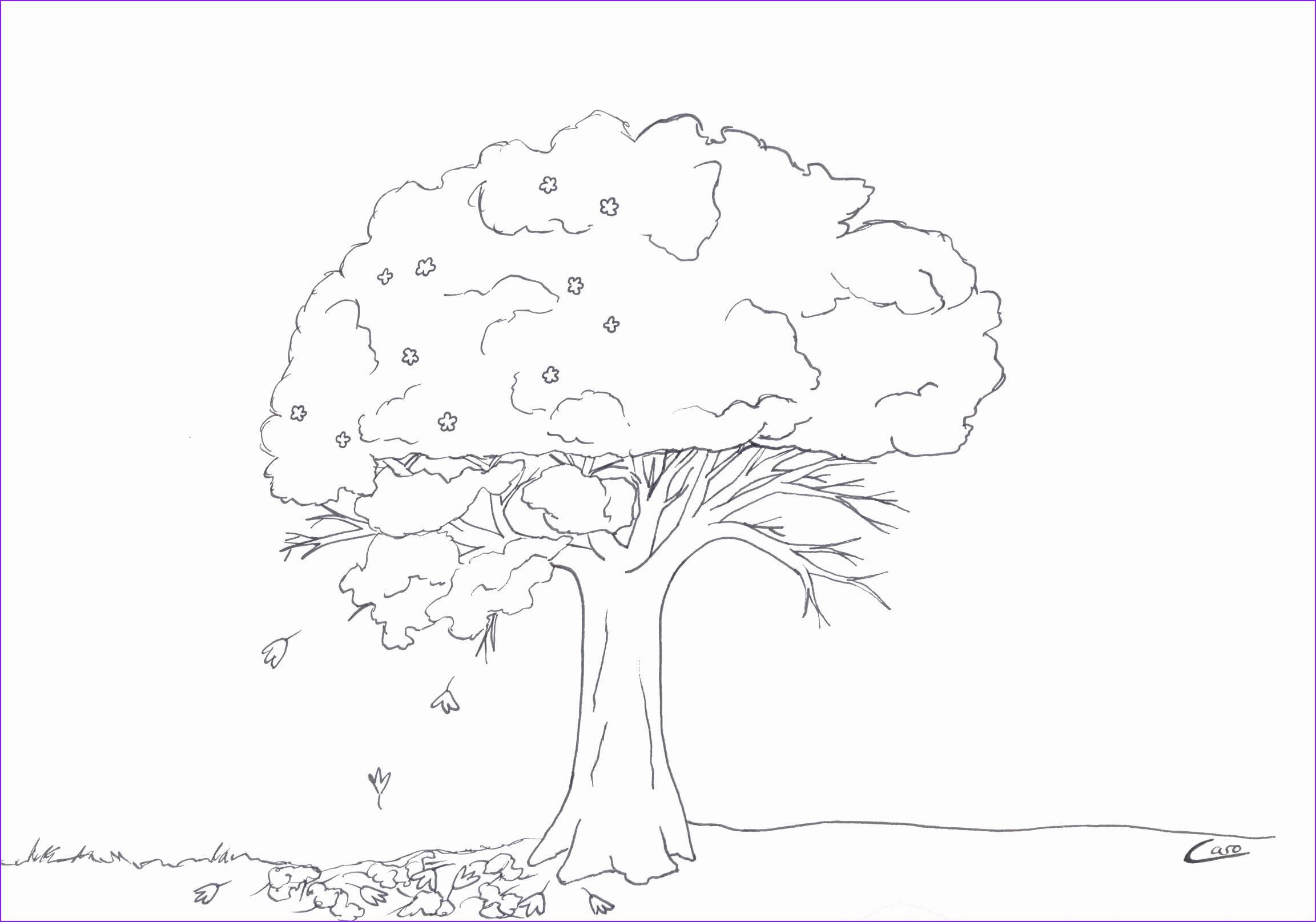 Ausmalbilder 7 Jahre Neu Baum Malen Vorlage Luxuriöse 90 Einzigartig Kahler Baum Fotos