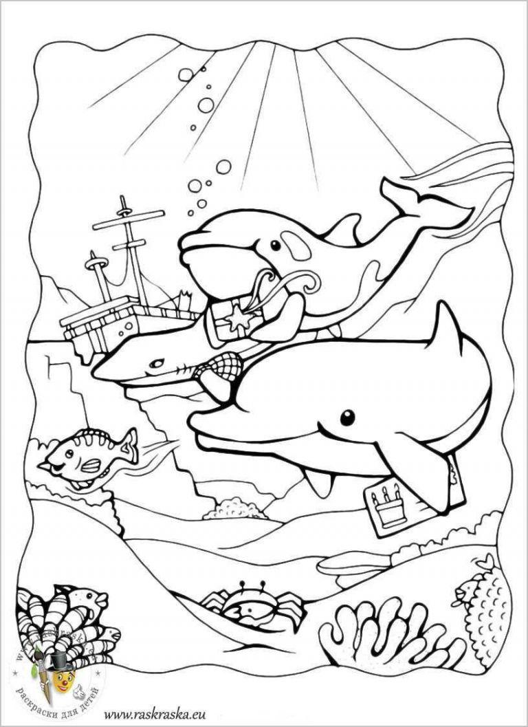 ausmalbilder delfin frisch ausmalbilder urlaub glubschi