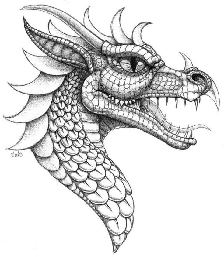 Ausmalbilder Drachen Einzigartig Malvorlagen Von Drachen Vorlage Zum Zeichnen Kostenlos Fotos