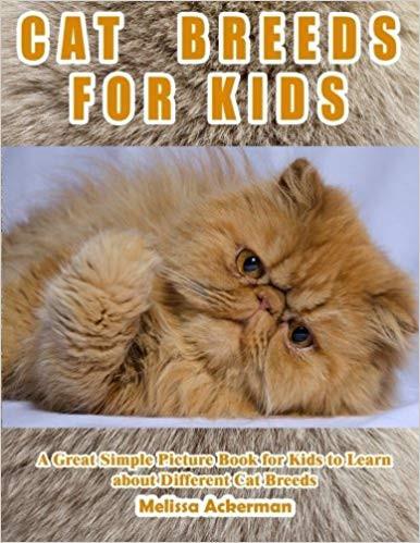 Ausmalbilder Für 9 Jährige Einzigartig X Reviewstexts Shared English Books Mp3 Stock