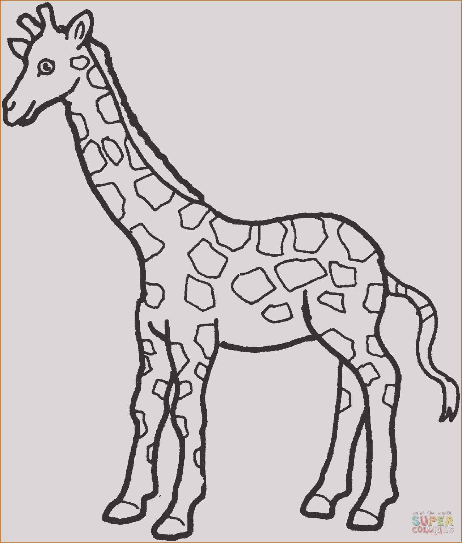 ausmalbilder giraffe frisch giraffe zum ausmalen best 35