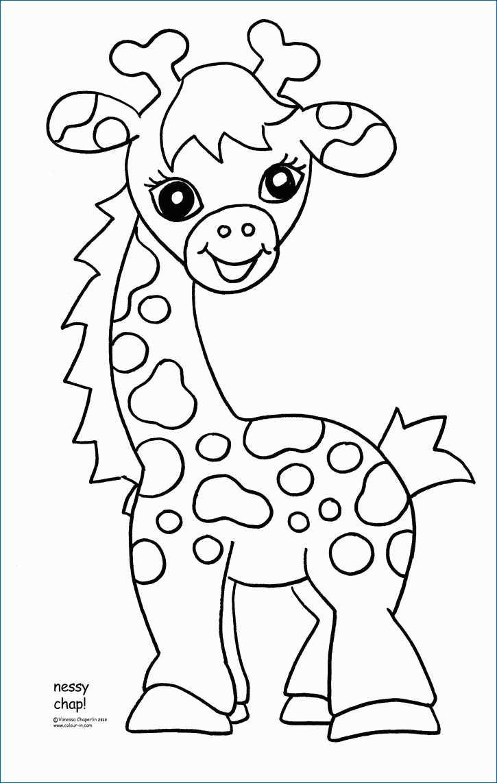 Ausmalbilder Giraffe Inspirierend Ausmalbilder Giraffe Cartoons Drawing Shop Ausmalbilder Bild
