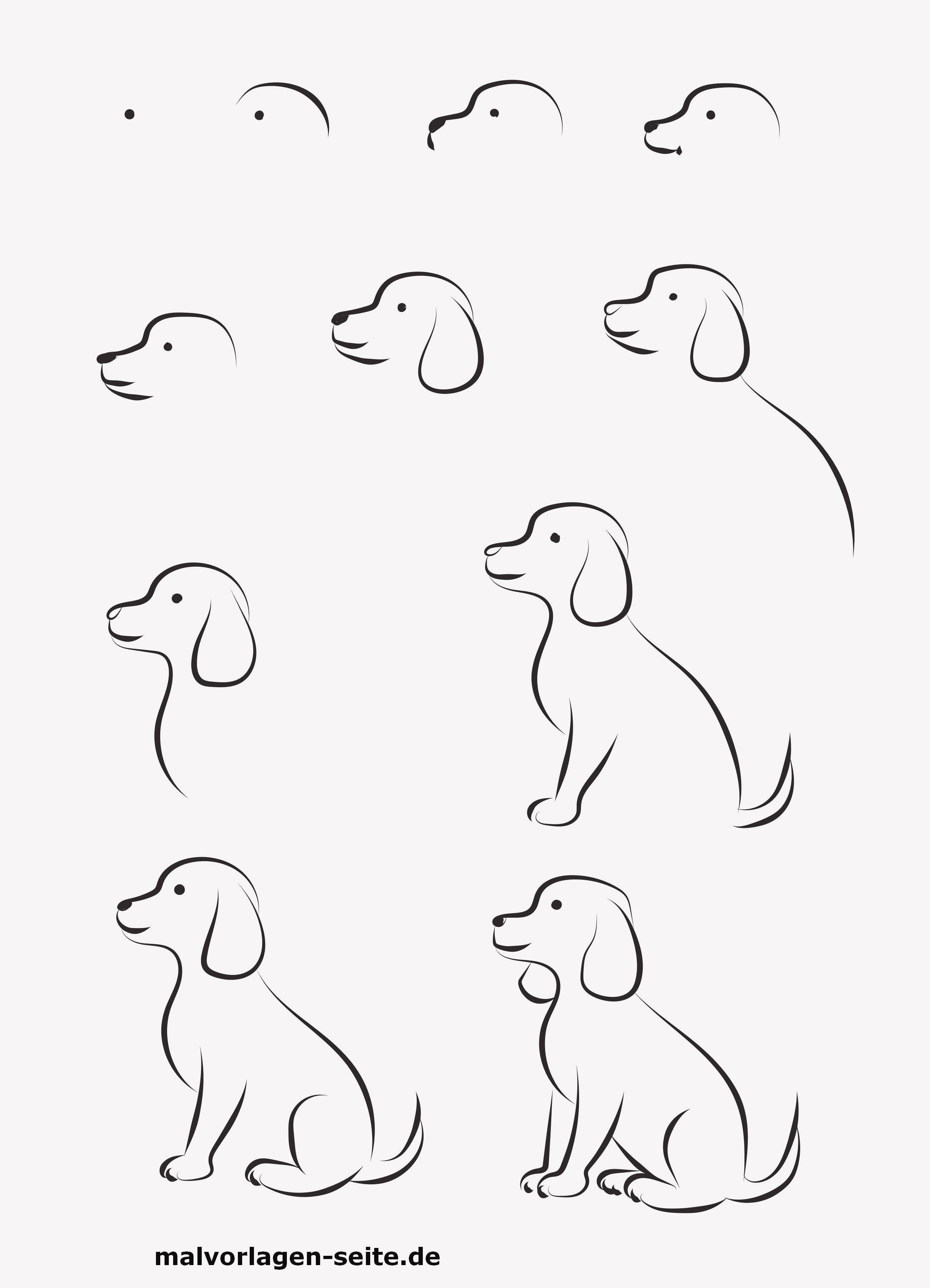 Ausmalbilder Hunde Das Beste Von Ausmalbild Hund Ausmalbilder Kostenlos Bild
