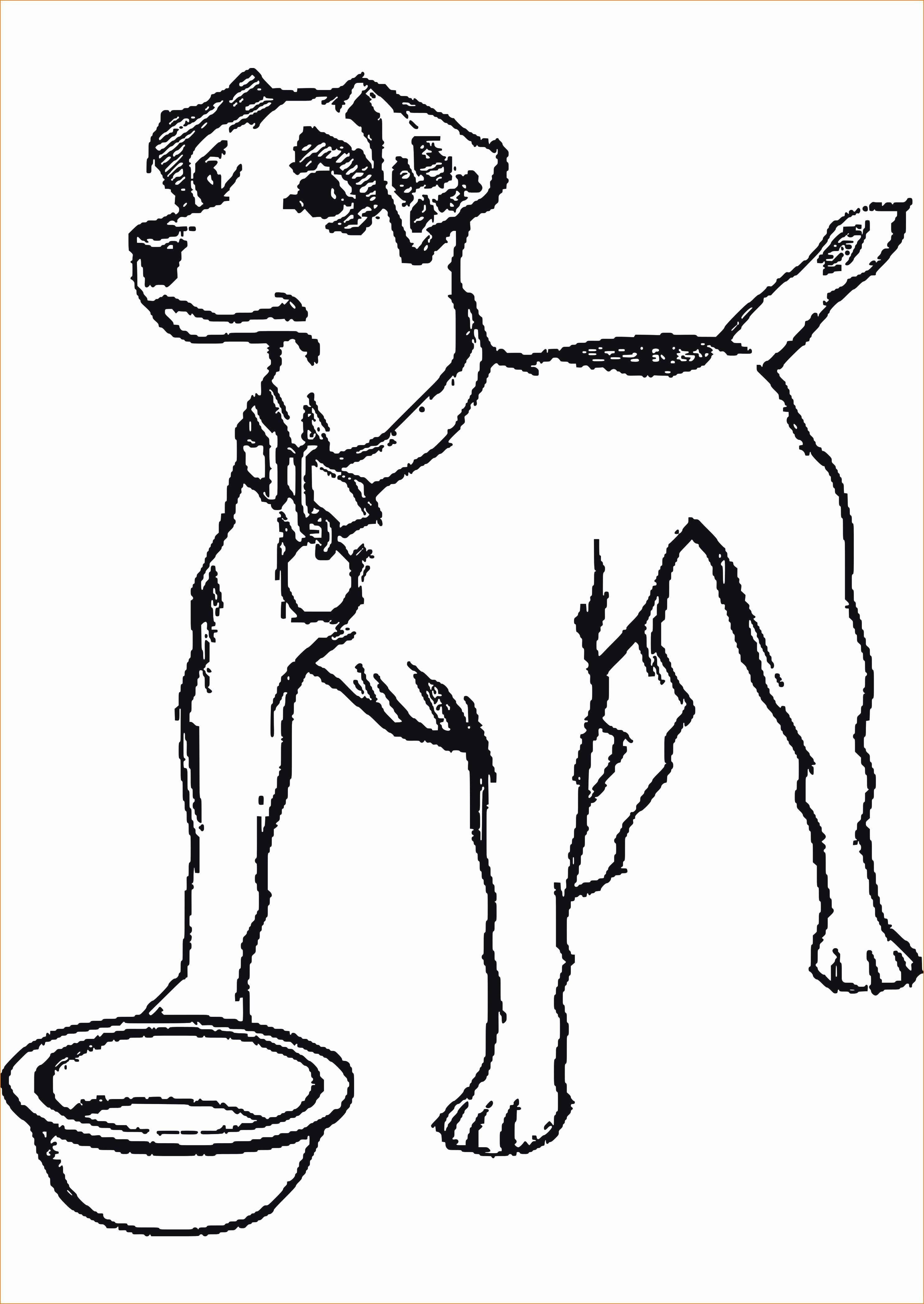 57 neu ausmalbilder hunde sammlung  kinder bilder