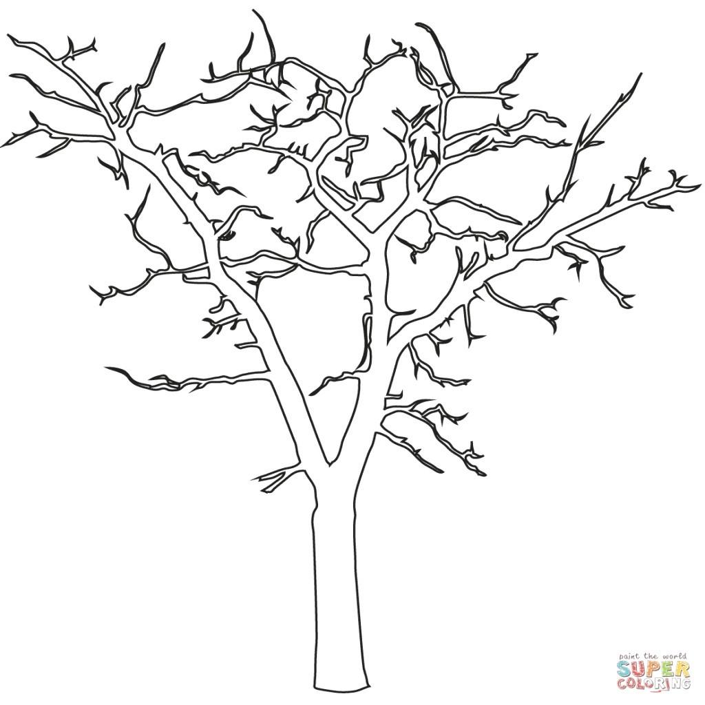Ausmalbilder Jahreszeiten Das Beste Von Prinzessin Malvorlage Baum Ohne Blätter Wiki Design Bild