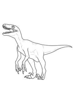 Ausmalbilder Jurassic World Das Beste Von 21 Best Ausmalbilder Jurassic World Dinosaurier Indominus Fotografieren