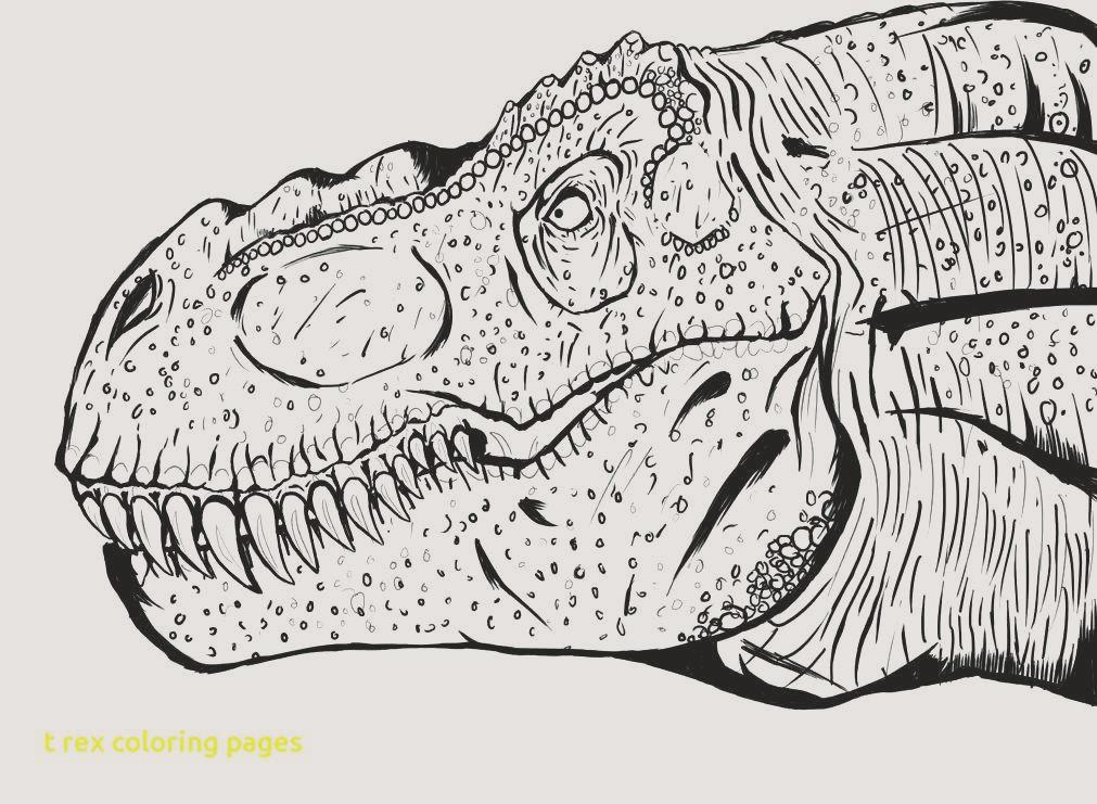 Ausmalbilder Jurassic World Frisch Dinosaur Rex Coloring Pages Unique 30 tolle Tyrannosaurus Fotografieren